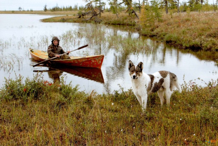 оохота не рыбалка